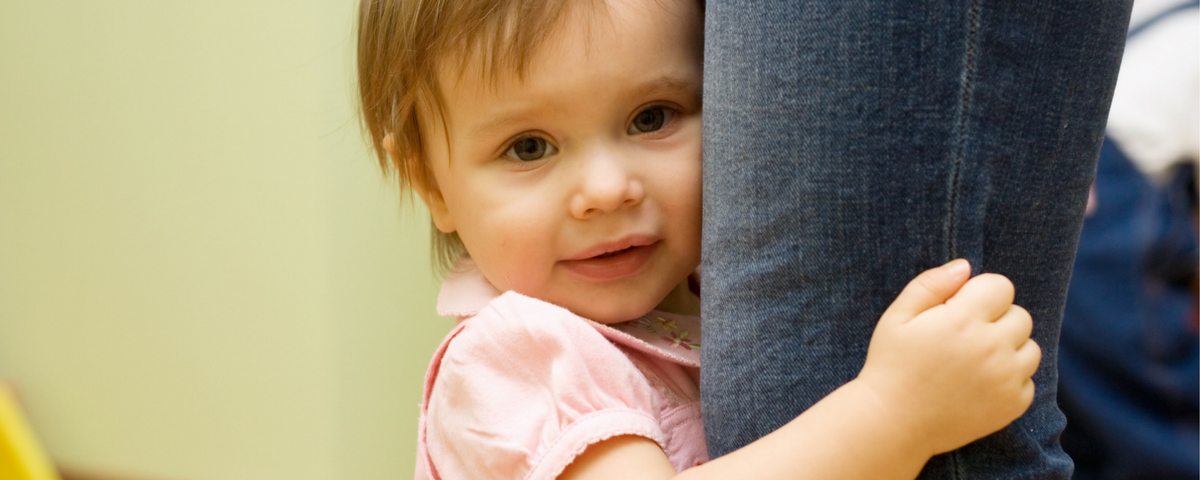 Toddler clings to parents legs